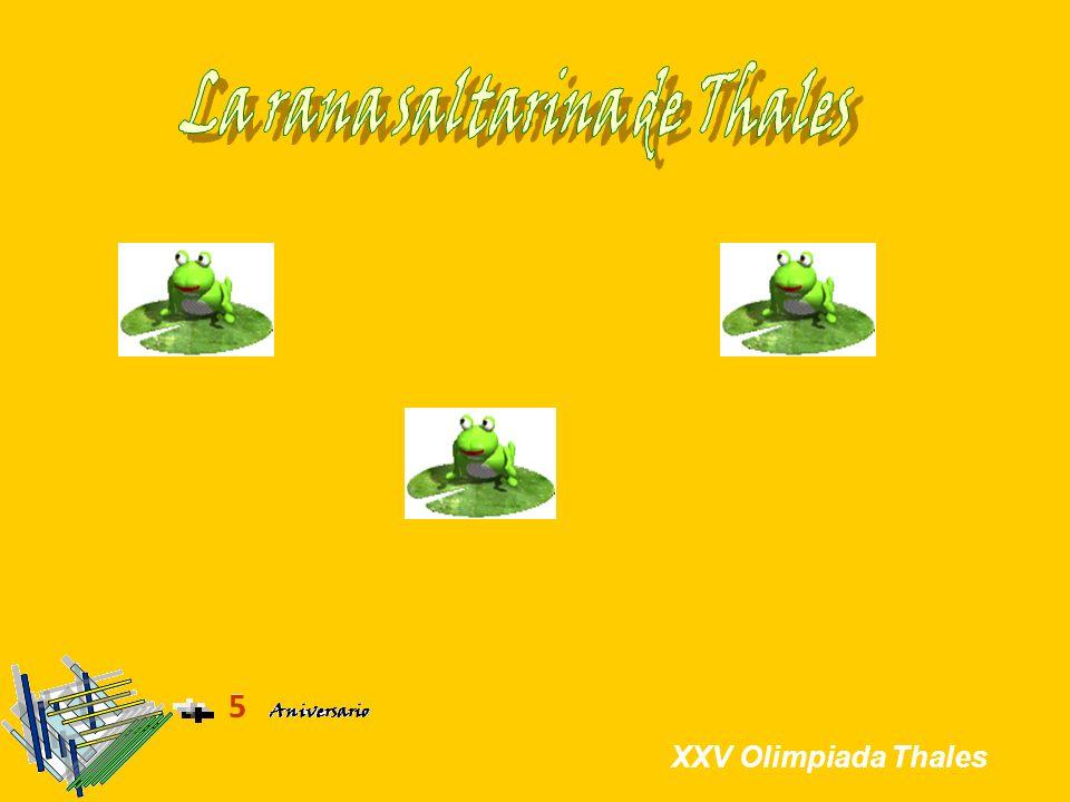 Solución Menú Enunciado Parte 1 Itinerario: Dentro-Fuera Se ha estudiado el itinerario de la rana cuando se trata de polígonos regulares.