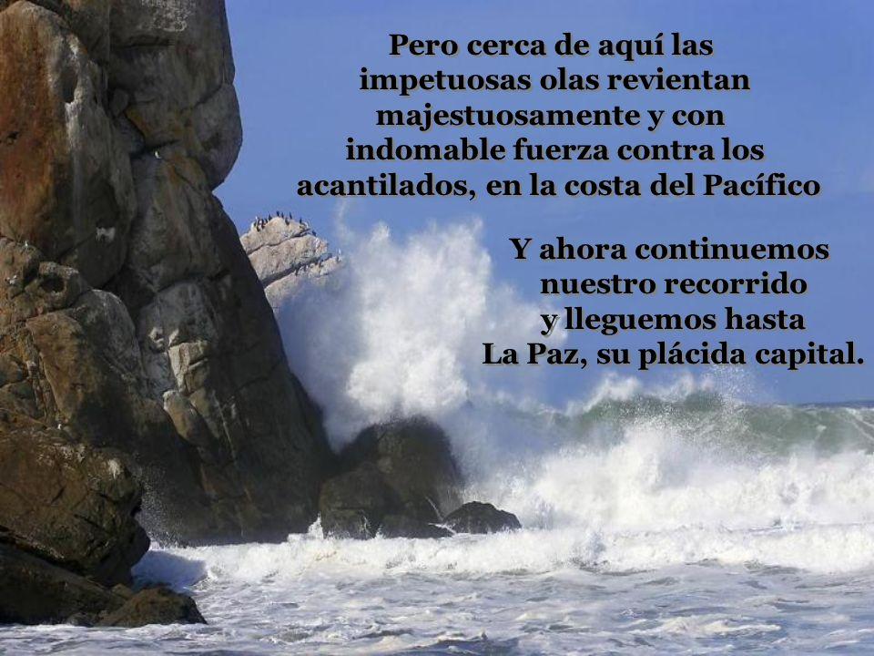 Pero cerca de aquí las impetuosas olas revientan majestuosamente y con indomable fuerza contra los acantilados, en la costa del Pacífico Pero cerca de aquí las impetuosas olas revientan majestuosamente y con indomable fuerza contra los acantilados, en la costa del Pacífico Y ahora continuemos nuestro recorrido y lleguemos hasta La Paz, su plácida capital.