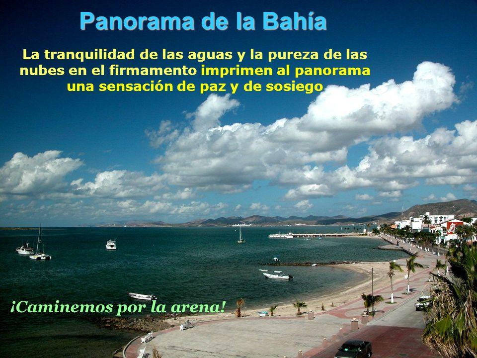 Panorama de la Bahía La tranquilidad de las aguas y la pureza de las nubes en el firmamento imprimen al panorama una sensación de paz y de sosiego ¡Caminemos por la arena!