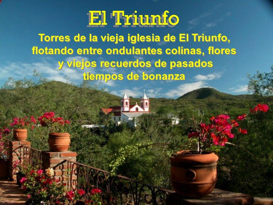 Torres de la vieja iglesia de El Triunfo, flotando entre ondulantes colinas, flores y viejos recuerdos de pasados tiempos de bonanza Torres de la vieja iglesia de El Triunfo, flotando entre ondulantes colinas, flores y viejos recuerdos de pasados tiempos de bonanza El Triunfo
