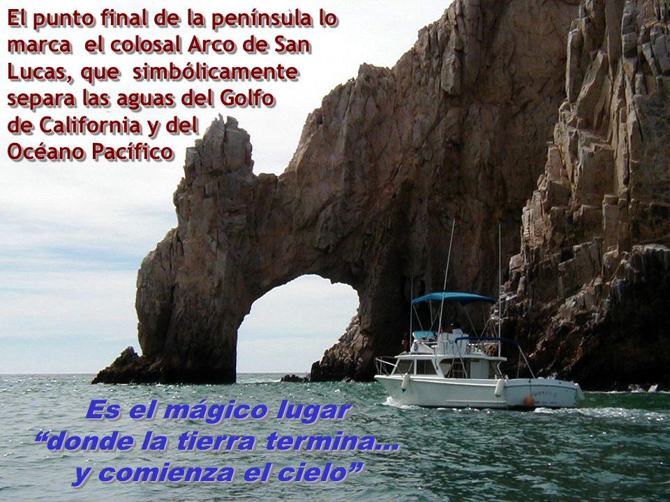 El punto final de la península lo marca el colosal Arco de San Lucas, que simbólicamente separa las aguas del Golfo de California y del Océano Pacífico Es el mágico lugar donde la tierra termina...