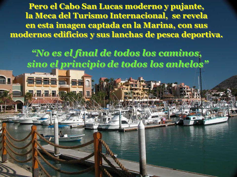 Pero el Cabo San Lucas moderno y pujante, la Meca del Turismo Internacional, se revela en esta imagen captada en la Marina, con sus modernos edificios y sus lanchas de pesca deportiva.
