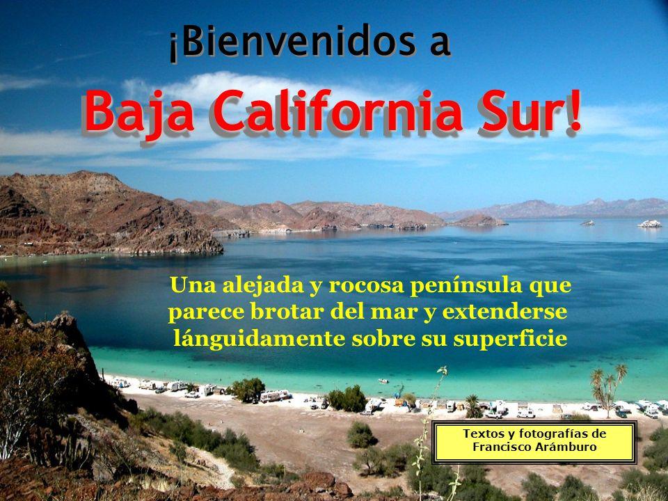 Baja California Sur.