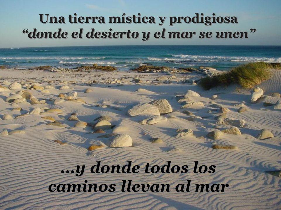 Una tierra mística y prodigiosa donde el desierto y el mar se unen...y donde todos los caminos llevan al mar