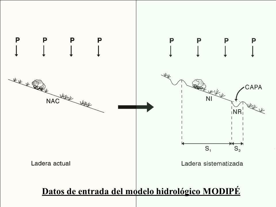 Datos de entrada del modelo hidrológico MODIPÉ