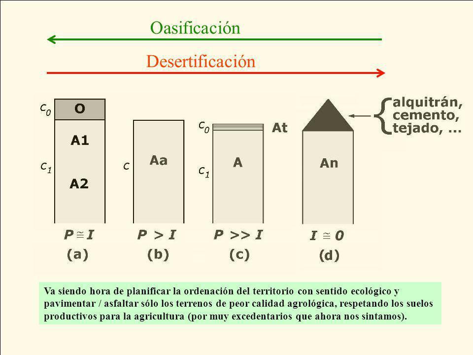 (a) suelos naturales con horizonte orgánico, (b) suelos agrícolas arados, (c) suelos fuertemente desertizados con una tastana y (d) suelos plenamente antrópicos (antroposoles).