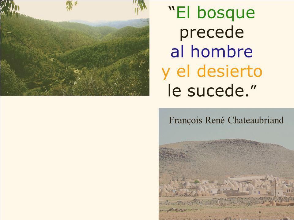 El bosque precede al hombre y el desierto le sucede. François René Chateaubriand