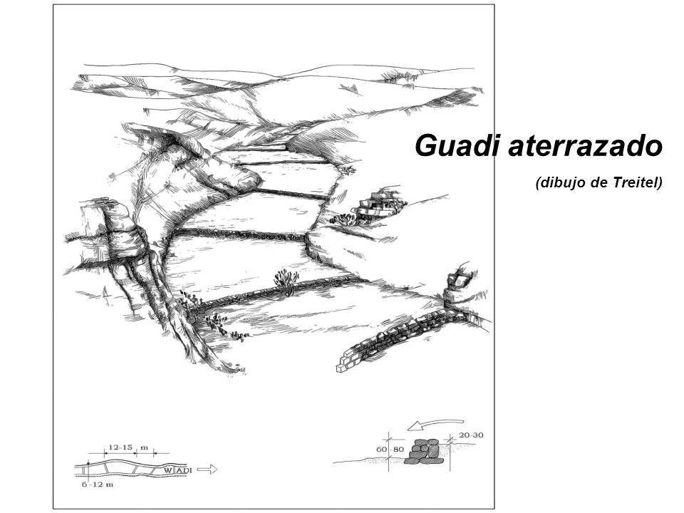 Guadi aterrazado (dibujo de Treitel)