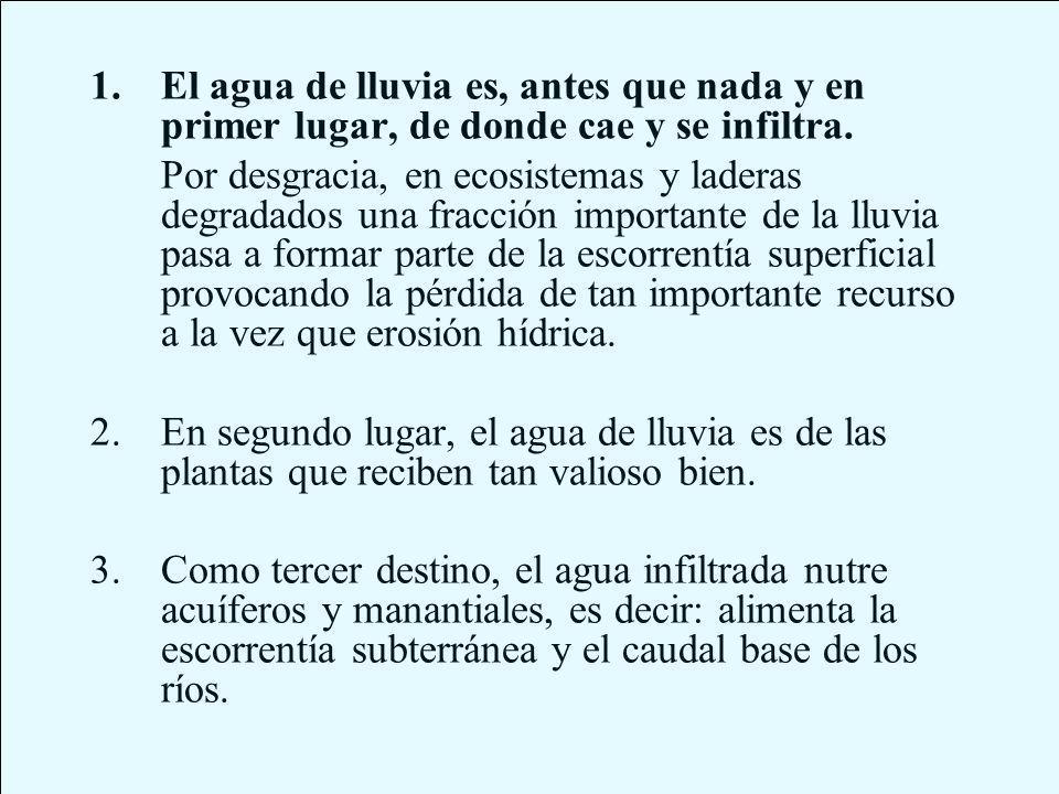 CABECERA DE LA RAMBLA DE EL CORTIJILLO ESFILIANA (GRANADA, ESPAÑA) 19301932 1946 2000