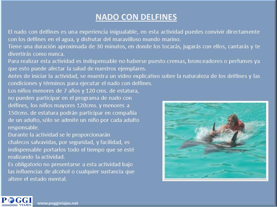 www.poggiviajes.net NADO CON DELFINES El nado con delfines es una experiencia inigualable, en esta actividad puedes convivir directamente con los delfines en el agua, y disfrutar del maravilloso mundo marino.