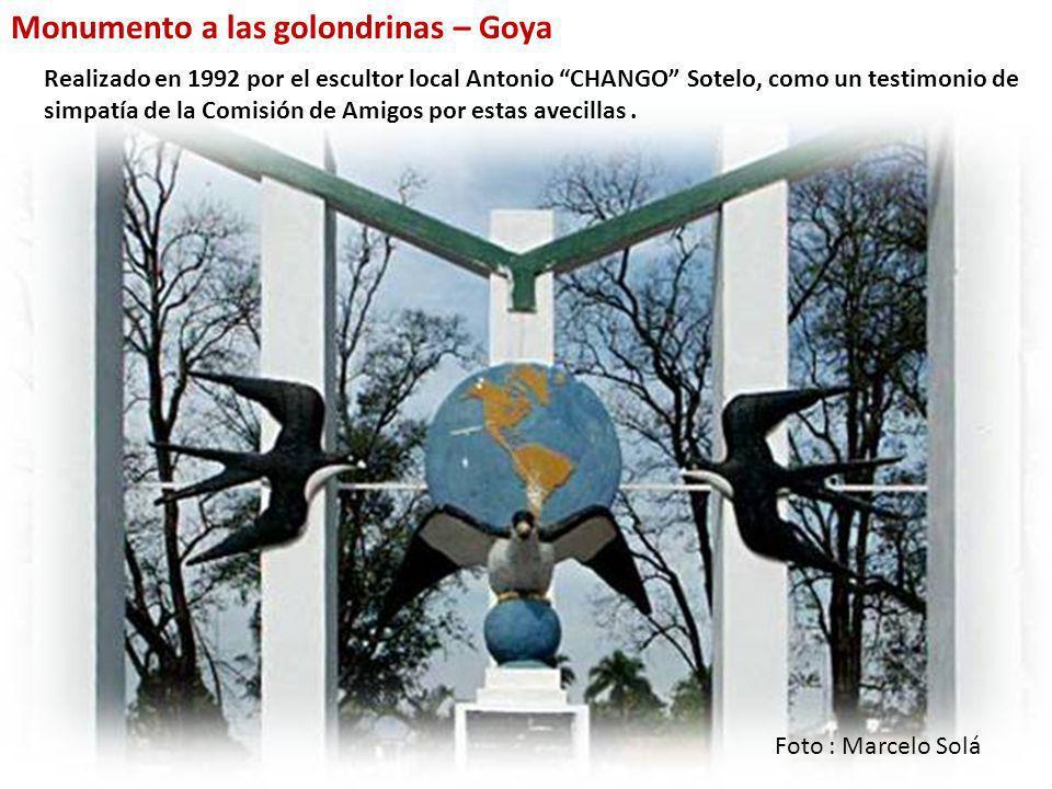 En la Argentina, se realizan distintos festejos para recibirlas durante nuestra primavera. En Goya, Corrientes, desde 1922 cada mes de noviembre se re