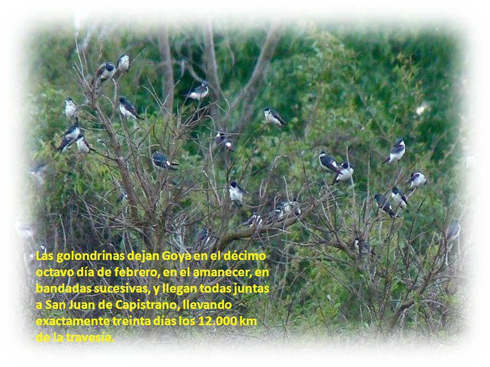 Goya - Corrientes Plazoleta del barrio Las Golondrinas