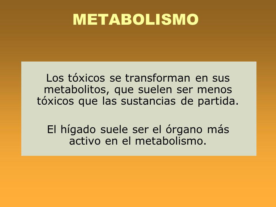 METABOLISMO Los tóxicos se transforman en sus metabolitos, que suelen ser menos tóxicos que las sustancias de partida. El hígado suele ser el órgano m