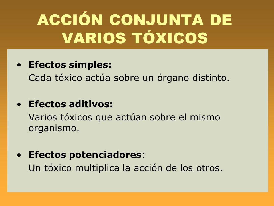 ACCIÓN CONJUNTA DE VARIOS TÓXICOS Efectos simples: Cada tóxico actúa sobre un órgano distinto. Efectos aditivos: Varios tóxicos que actúan sobre el mi