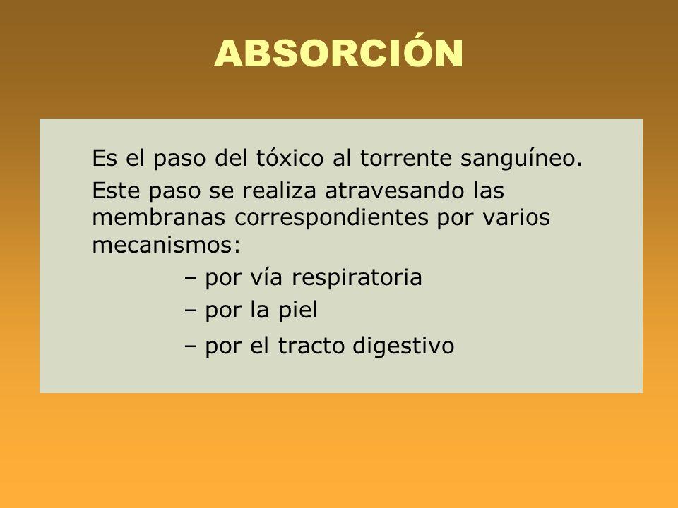 ABSORCIÓN Es el paso del tóxico al torrente sanguíneo. Este paso se realiza atravesando las membranas correspondientes por varios mecanismos: –por vía
