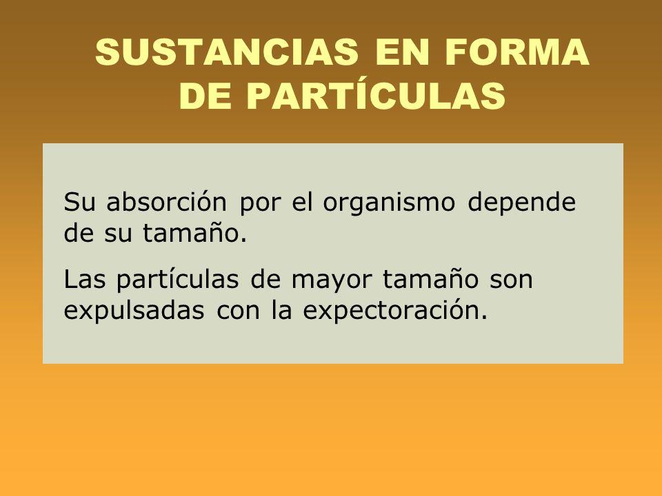 SUSTANCIAS EN FORMA DE PARTÍCULAS Su absorción por el organismo depende de su tamaño. Las partículas de mayor tamaño son expulsadas con la expectoraci