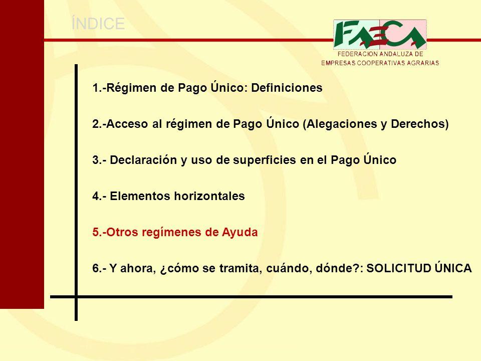 ÍNDICE 1.-Régimen de Pago Único: Definiciones 2.-Acceso al régimen de Pago Único (Alegaciones y Derechos) 3.- Declaración y uso de superficies en el P