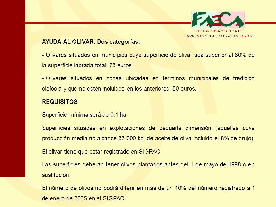 AYUDA AL OLIVAR: Dos categorías: - Olivares situados en municipios cuya superficie de olivar sea superior al 80% de la superficie labrada total: 75 eu