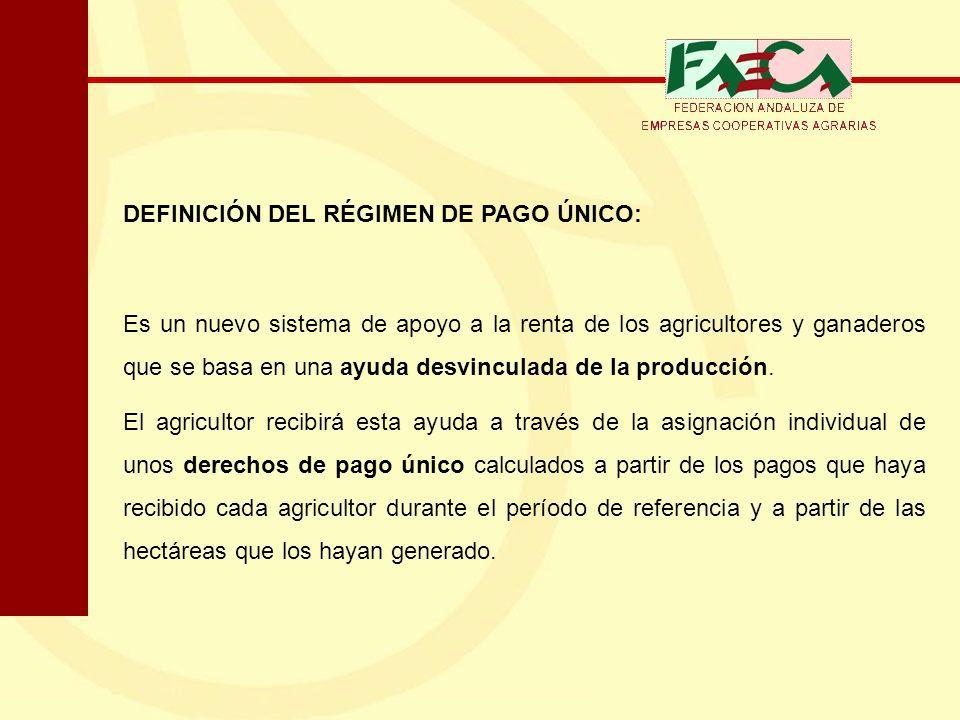 DEFINICIÓN DEL RÉGIMEN DE PAGO ÚNICO: Es un nuevo sistema de apoyo a la renta de los agricultores y ganaderos que se basa en una ayuda desvinculada de