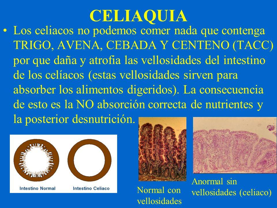 CELIAQUIA Los celiacos no podemos comer nada que contenga TRIGO, AVENA, CEBADA Y CENTENO (TACC) por que daña y atrofia las vellosidades del intestino