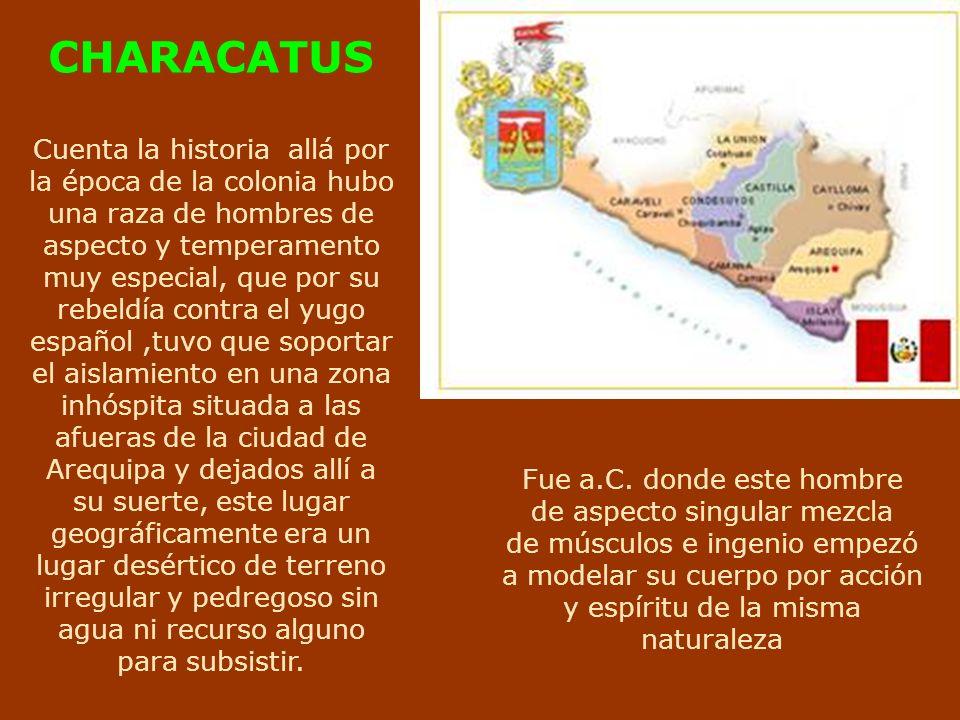 CORDILLERA DE LOS ANDES ENTRE CUZCO Y AREQUIPA