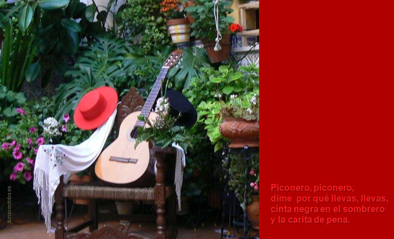 Piconero, piconero, dime por qué llevas, llevas, cinta negra en el sombrero y la carita de pena.