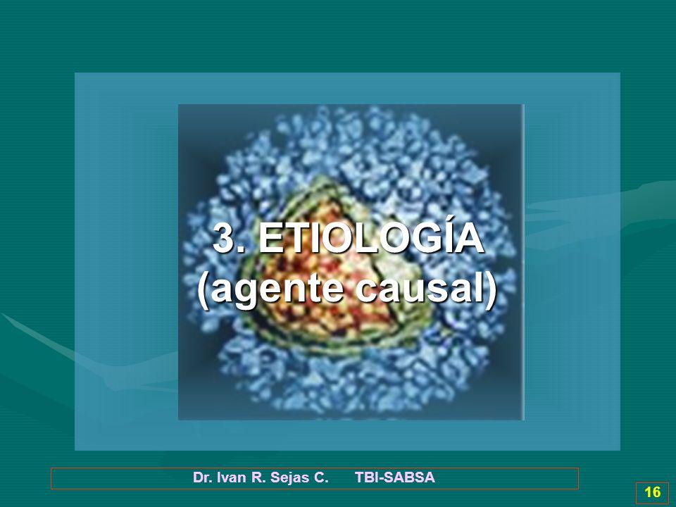 Dr. Ivan R. Sejas C. TBI-SABSA 16 3. ETIOLOGÍA (agente causal)