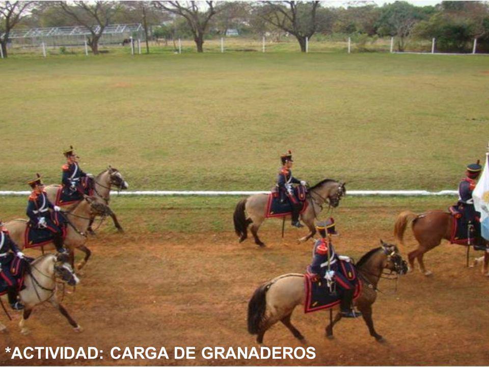 *ACTIVIDAD: CARGA DE GRANADEROS
