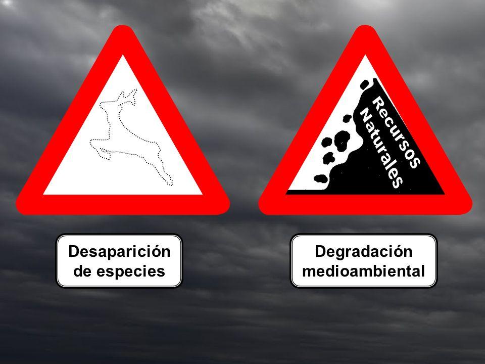 Degradación medioambiental Desaparición de especies