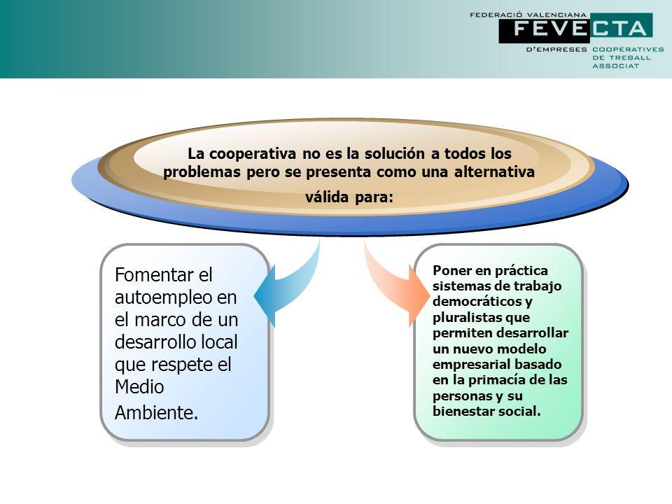EMPRESAS CON VOCACION DE SERVICIO SOCIAL CONTRA LA DISCRIMINACION IGUALDAD E INTEGRACION EMPRESAS DONDE LAS PERSONAS SON LO PRIMERO DEMOCRACIA ECONOMICA PARTlCIPACION + EFICIENCIA ESPIRITU DE EMPRESA LA INTELIGENCIA DEL EMPRESARIO COLECTIVO CREACION DE EMPLEO PRIORIDAD DEL FACTOR TRABAJO DESARROLLO LOCAL Y RESPETO AL MEDIO AMBIENTE EMPRESAS CON RAICES