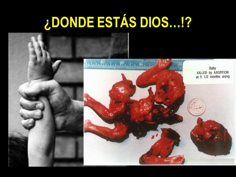 ¿DONDE ESTÁS DIOS…!?
