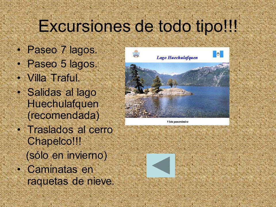 Excursiones de todo tipo!!! Paseo 7 lagos. Paseo 5 lagos. Villa Traful. Salidas al lago Huechulafquen (recomendada) Traslados al cerro Chapelco!!! (só