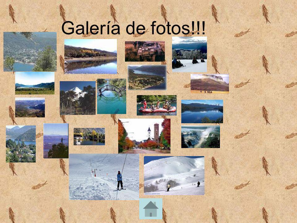 Galería de fotos!!!