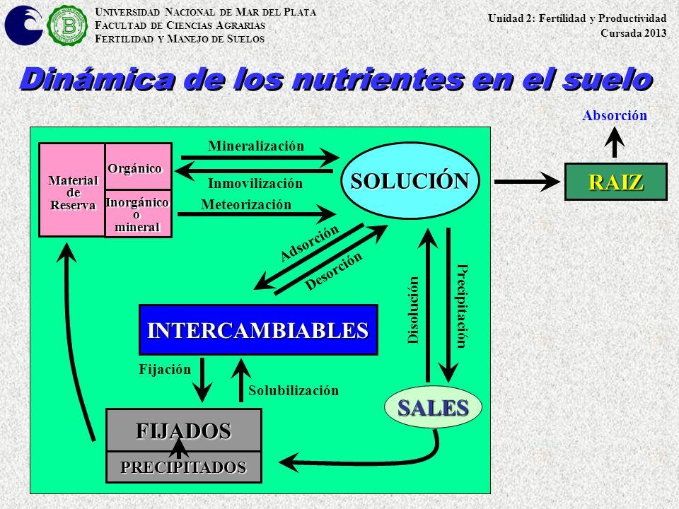 U NIVERSIDAD N ACIONAL DE M AR DEL P LATA F ACULTAD DE C IENCIAS A GRARIAS F ERTILIDAD Y M ANEJO DE S UELOS Dinámica de los nutrientes en el suelo SOL