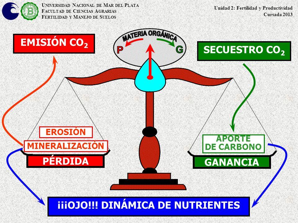 PÉRDIDA GANANCIA MINERALIZACIÓN EROSIÓN APORTE DE CARBONO EMISIÓN CO 2 SECUESTRO CO 2 ¡¡¡OJO!!! DINÁMICA DE NUTRIENTES U NIVERSIDAD N ACIONAL DE M AR