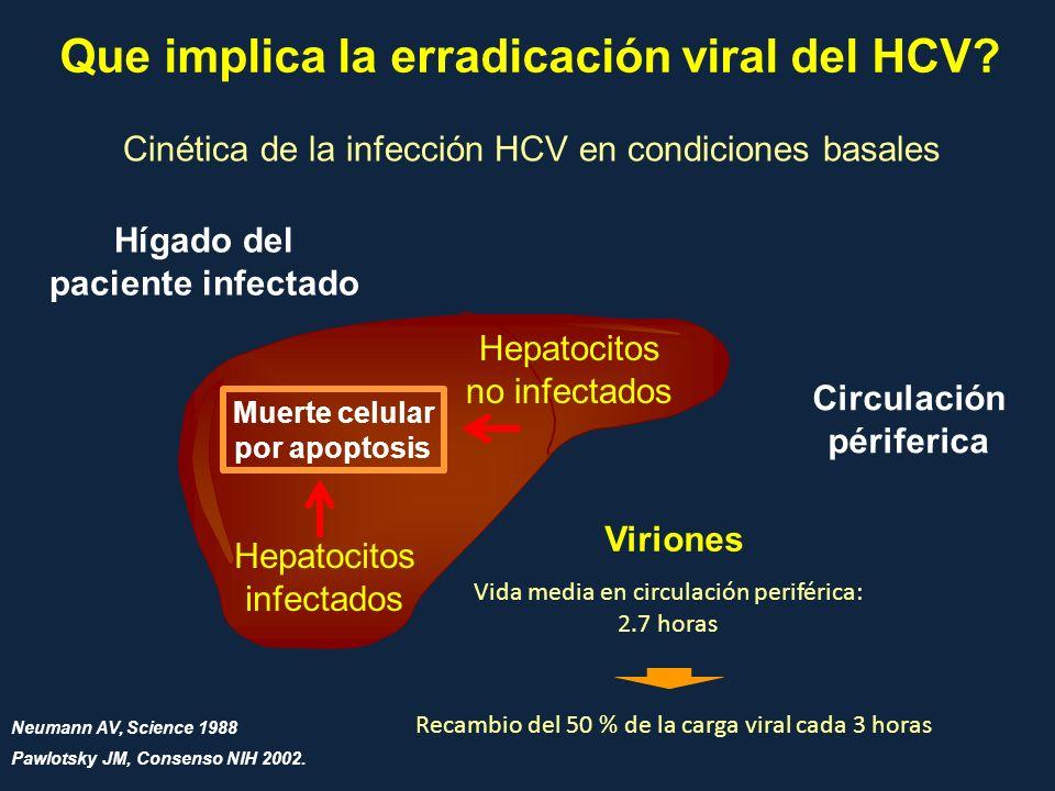 Que implica la erradicación viral del HCV? Cinética de la infección HCV en condiciones basales Hepatocitos infectados Hepatocitos no infectados Hígado