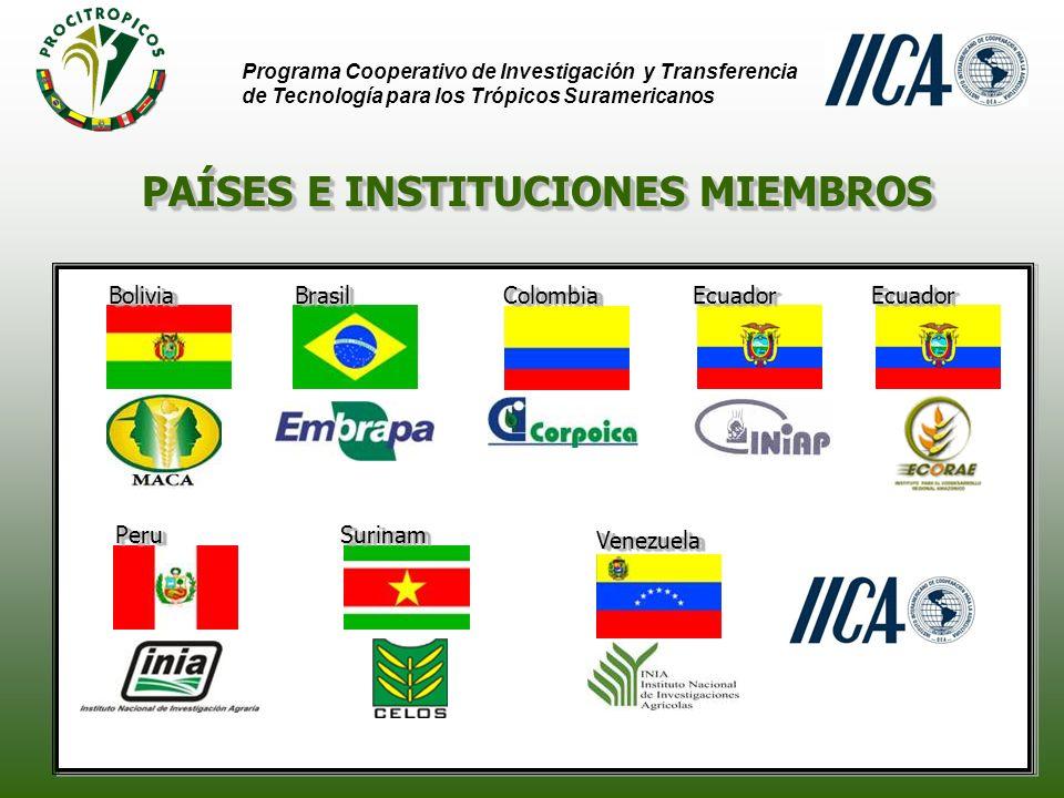 PAÍSES E INSTITUCIONES MIEMBROS Programa Cooperativo de Investigación y Transferencia de Tecnología para los Trópicos Suramericanos BrasilBrasilColombiaColombia PeruPeru BoliviaBolivia VenezuelaVenezuela EcuadorEcuador SurinamSurinam EcuadorEcuador
