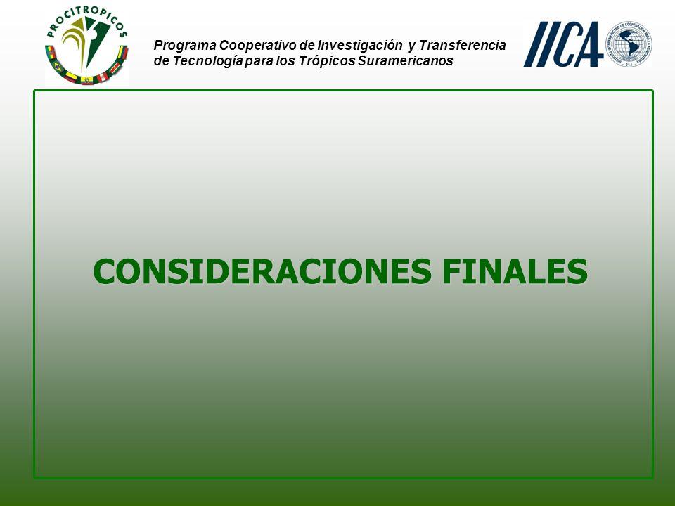 Programa Cooperativo de Investigación y Transferencia de Tecnología para los Trópicos Suramericanos CONSIDERACIONES FINALES