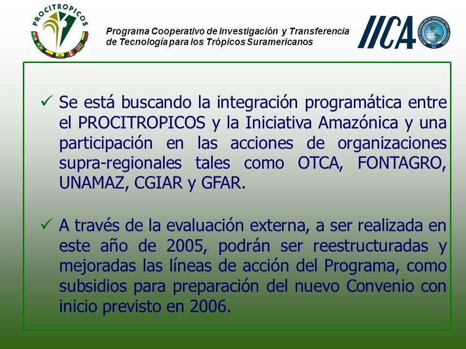 Programa Cooperativo de Investigación y Transferencia de Tecnología para los Trópicos Suramericanos Se está buscando la integración programática entre el PROCITROPICOS y la Iniciativa Amazónica y una participación en las acciones de organizaciones supra-regionales tales como OTCA, FONTAGRO, UNAMAZ, CGIAR y GFAR.