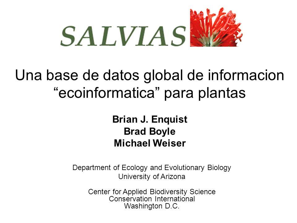 Antecedentes El proyecto SALVIAS Como funciona SALVIAS.