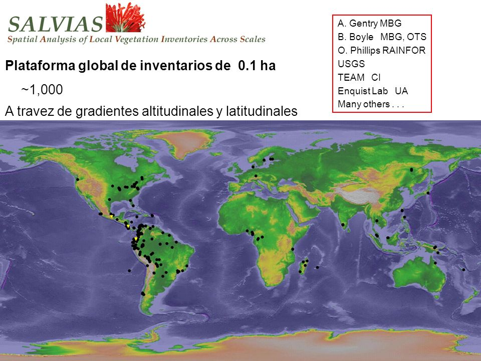 Salvias. Outline_plotmap A. Gentry MBG B. Boyle MBG, OTS O. Phillips RAINFOR USGS TEAM CI Enquist Lab UA Many others... Plataforma global de inventari