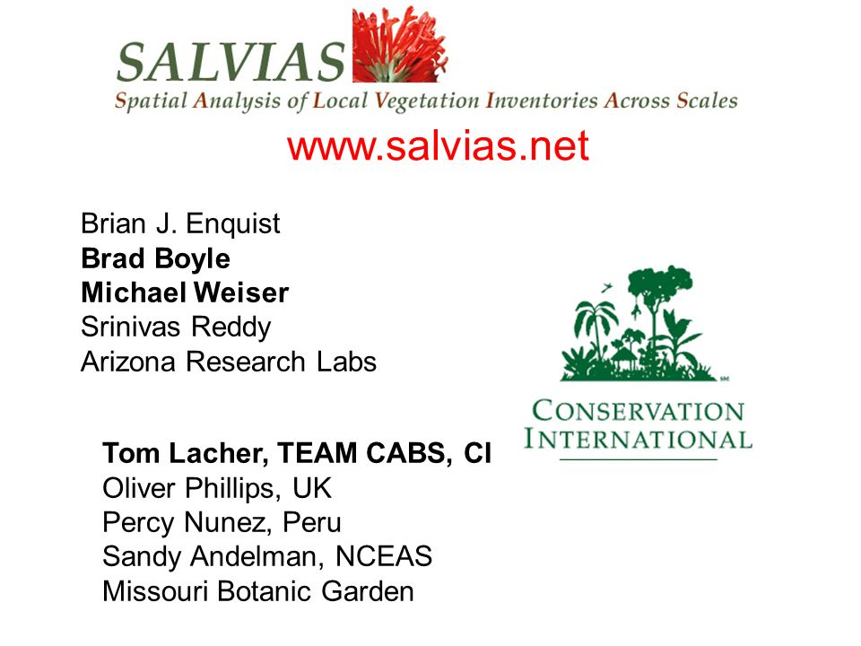 salvias www.salvias.net Brian J. Enquist Brad Boyle Michael Weiser Srinivas Reddy Arizona Research Labs Tom Lacher, TEAM CABS, CI Oliver Phillips, UK