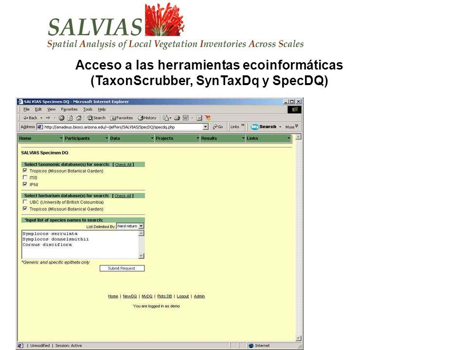 Acceso a las herramientas ecoinformáticas (TaxonScrubber, SynTaxDq y SpecDQ)