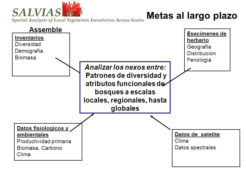 SALVIAS Componentes Herramientas geograficas Especimenes Inventarios Bases de datos externos de atributos ambientales Bases de datos externos de atributos de especies Herramientas taxonomicas