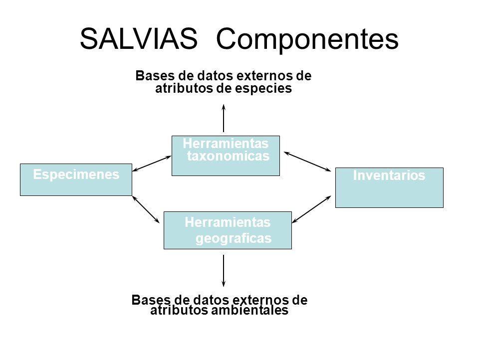 SALVIAS-Taxonomia Lista de especies Taxon-Scrubber Lista original + nombres asociados Bases de datos externos (e.g., IPNI, TROPICOS) Bases de datos locales (e.g., USDA checklist para Norteamerica, Flora del Peru) Syn/Tax DQ