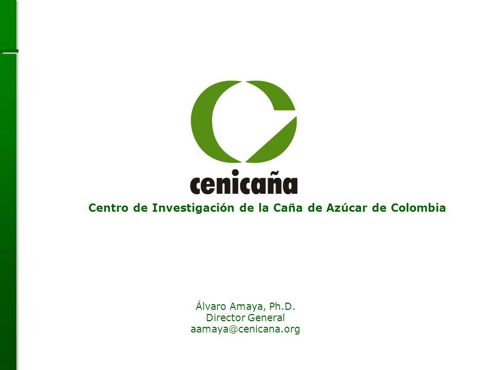 Centro de Investigación de la Caña de Azúcar de Colombia Álvaro Amaya, Ph.D. Director General aamaya@cenicana.org Centro de Investigación de la Caña d