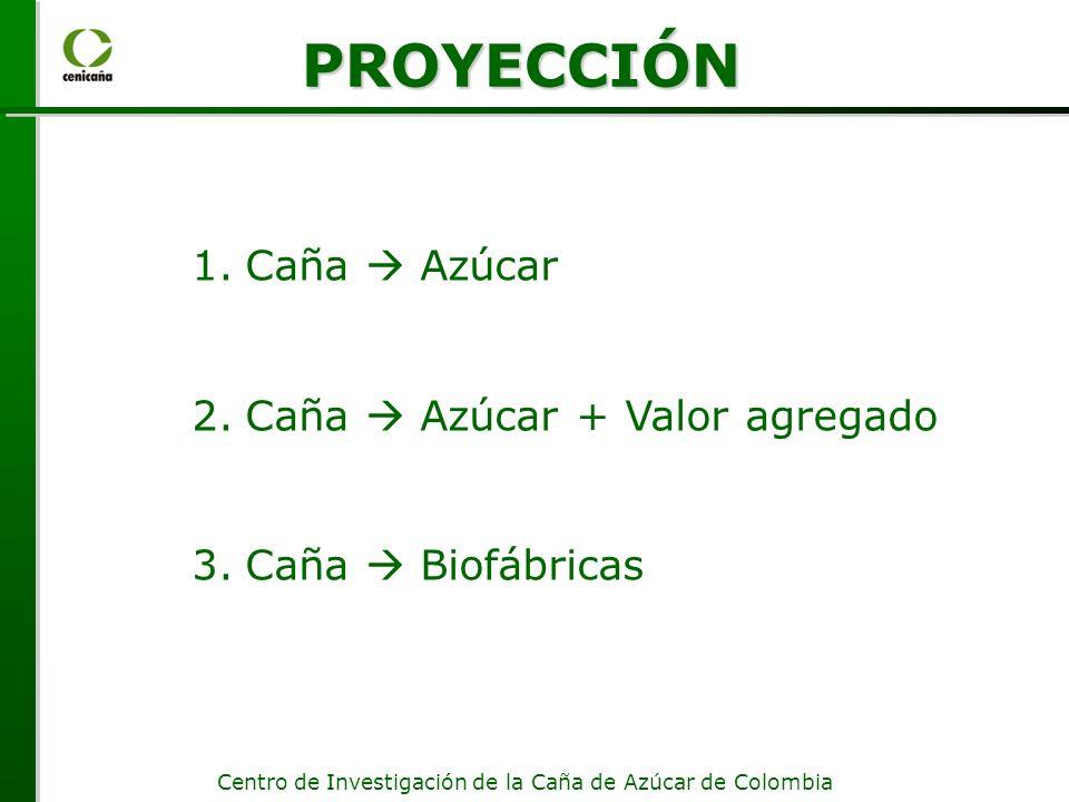 Centro de Investigación de la Caña de Azúcar de Colombia PROYECCIÓN 1.Caña Azúcar 2.Caña Azúcar + Valor agregado 3.Caña Biofábricas 4.Caña Diversifica