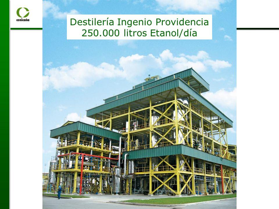 Destilería Ingenio Providencia 250.000 litros Etanol/día