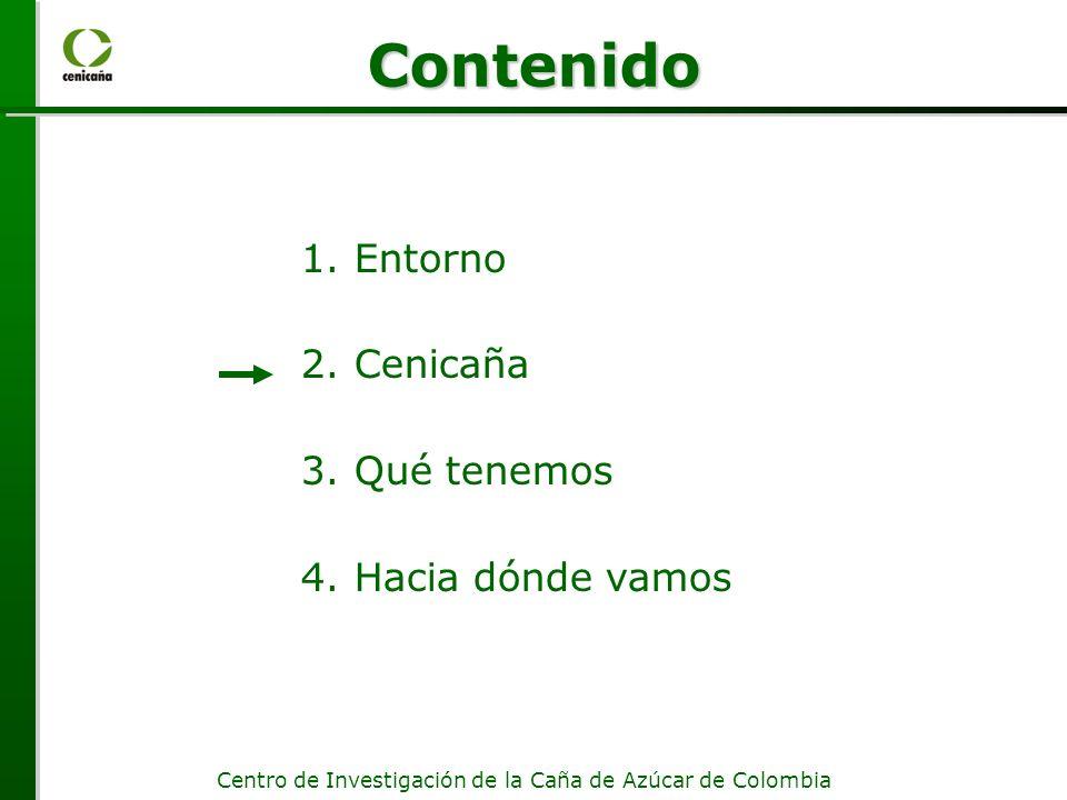 Centro de Investigación de la Caña de Azúcar de Colombia 1.Entorno 2.Cenicaña 3.Qué tenemos 4.Hacia dónde vamos Contenido