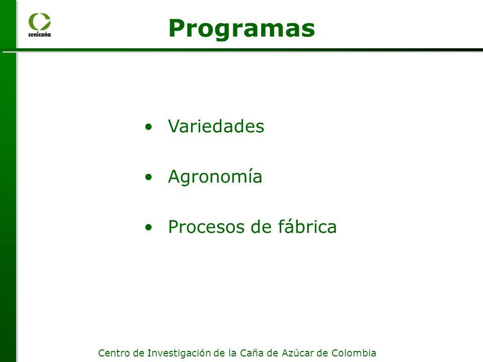 Centro de Investigación de la Caña de Azúcar de Colombia Investigación, Invención Valle de la muerte ADAPTADO DE :Creating a Regional Innovation Cluster: From Discovery to Application.